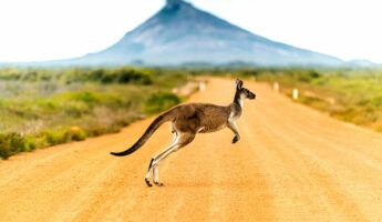 11 Most Beautiful Places in Australia to Visit Before You Die