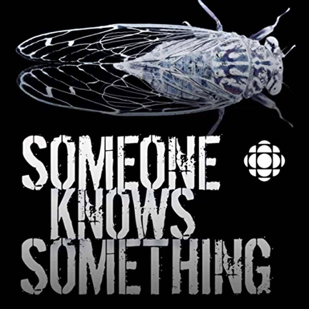 best murder podcasts someone knows something